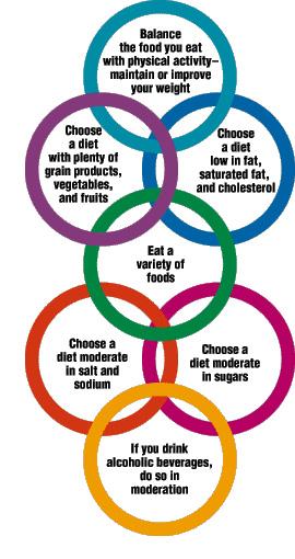 膳食结构和膳食指南